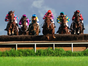 Horse Racing at Navan Co. Meath